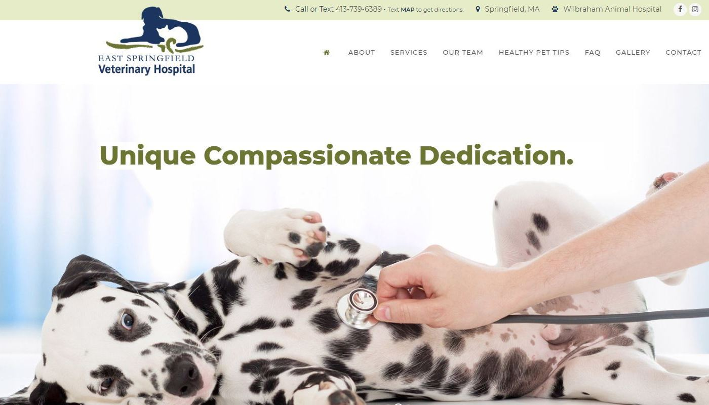 ESV Vet Hospital WordPress Website Design Western MA