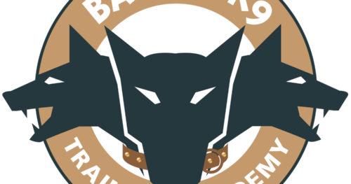 Bandit K9 Training Academy New Logo